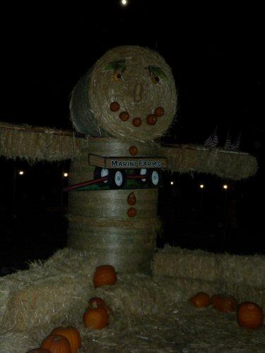 Marini Farm Scarecrow