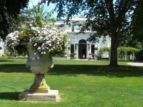 Flower Pot on the Lawn