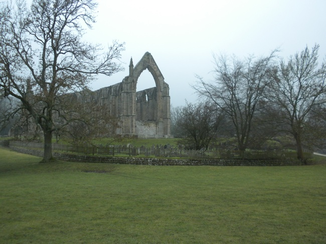 Portrait of the Abbey