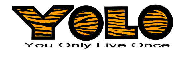 YOLO Tiger